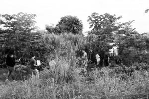 alizee jaggi panama luis 10